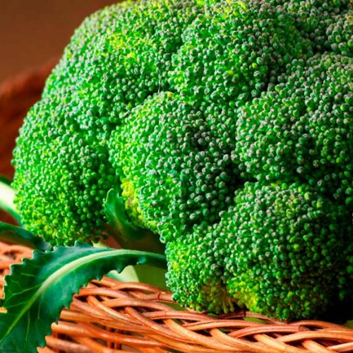 Son muchísimos losbeneficios que el brócoliofrece a nuestra salud, y la mejor forma de consumirlo es en crudo en ensaladas o cocido al vapor.