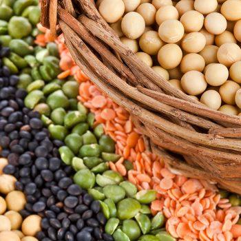 Alimentos con más proteínas vegetales